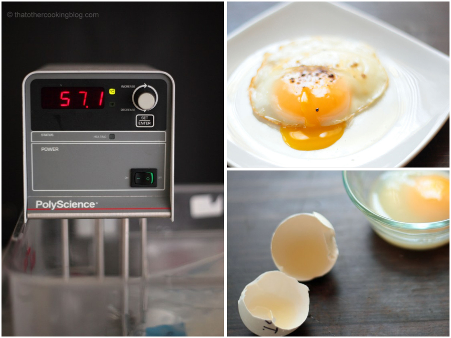 Pasteurizing Eggs or Mayo at Home
